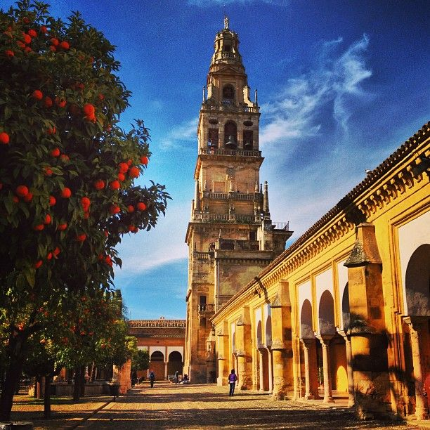 Mezquita-Catedral de Córdoba in Córdoba, Andalucía