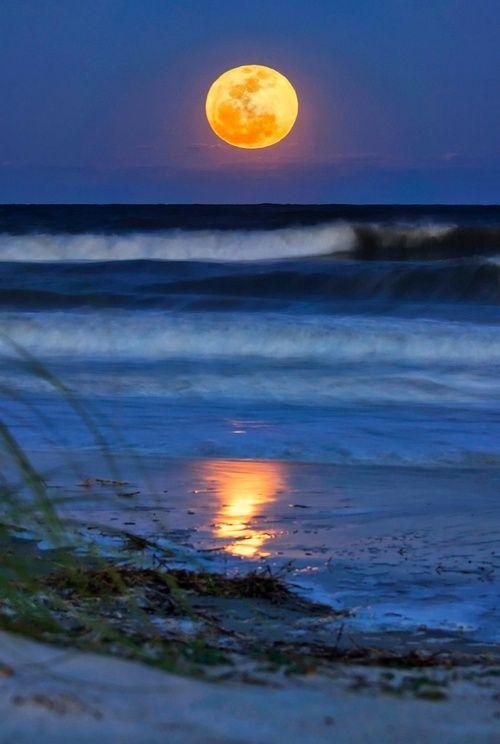Una luna piena, Hilton Head Island, Carolina del Sud