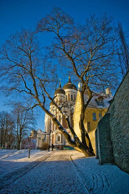 Aleksander Nevsky Cathedral ~ Tallinn, Estonia
