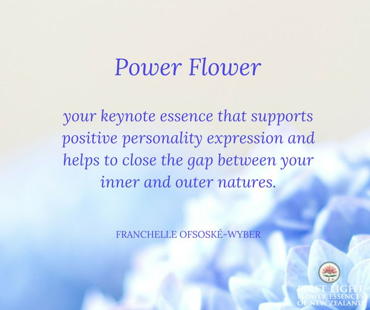 Power Flower is a personal keynote essence that corresponds to your date of birth.