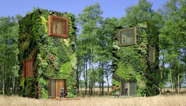 Nachhaltig Wohnen In Der Zukunft: Ab Ins Moderne Baumhaus | Haus ... Modernes Baumhaus Pool Futuristisches Konzept