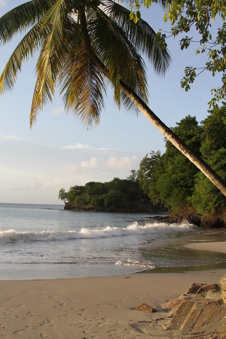 The beach at Morgan's Bay, St Lucia