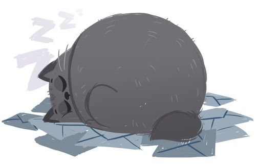 Daily cat drawing