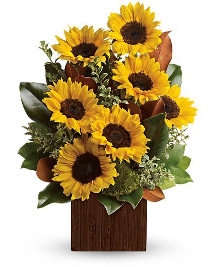 You re golden sunflower bouquet by teleflora flowers