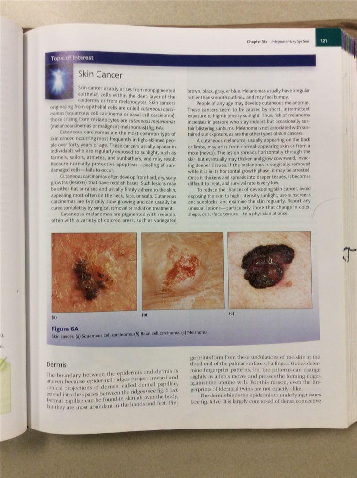 1e992fd40354201314019a9c8a0a21be physiology anatomy