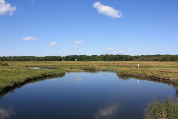 17 Best Images About Salt Marsh On Pinterest Maine Cape Cod And Vacation Rentals