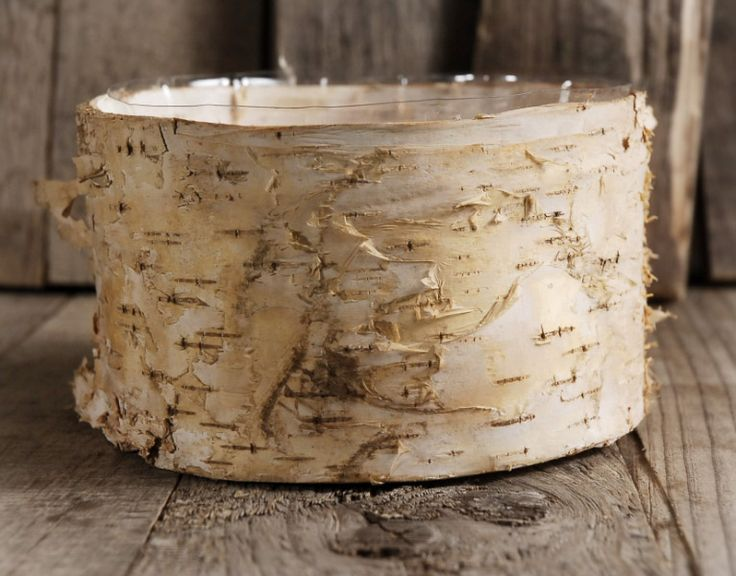 17 best images about purse p2 tree stump with birch for Birch wood cost
