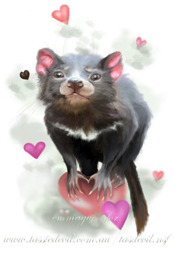 Save Tasmanian Devil , Emma Art  on ArtStation at https://www.artstation.com/artwork/save-tasmanian-devil