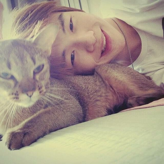 The cat is so lucky...huhuhu..im just a potato....