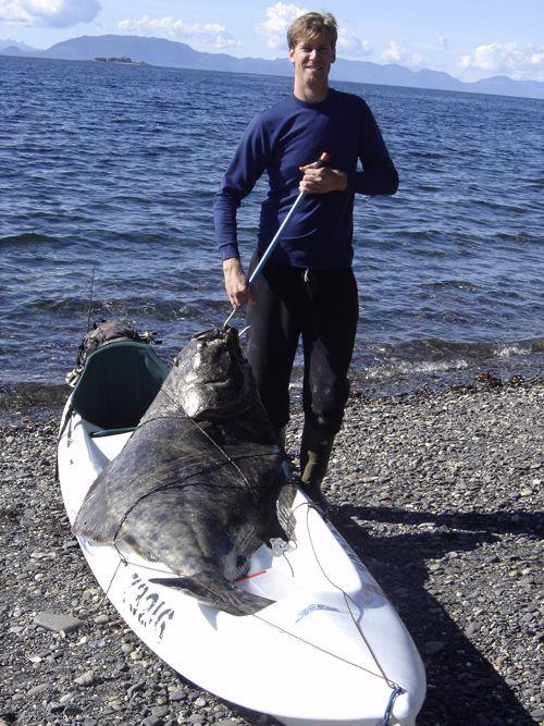 183 pound halibut, nice one Howard! #Ketchikan #Alaska
