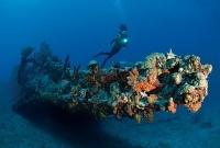 Scuba Diving Magazine getting involved in something sensational.