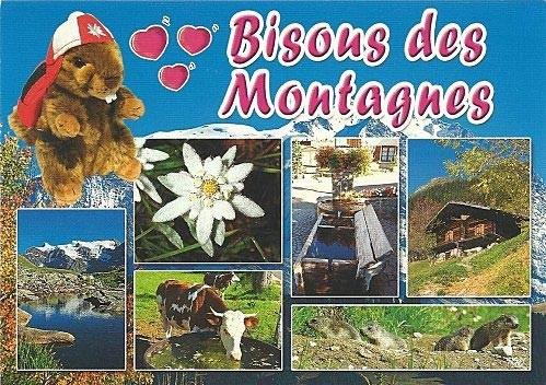 La carte postale des vacances à la Montagne | #Vacances | #montagne | #CartePostale | | Carte ...