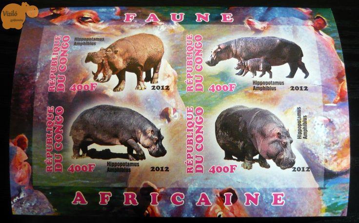 No. 804 | víziló | bélyeg | hippo | stamp