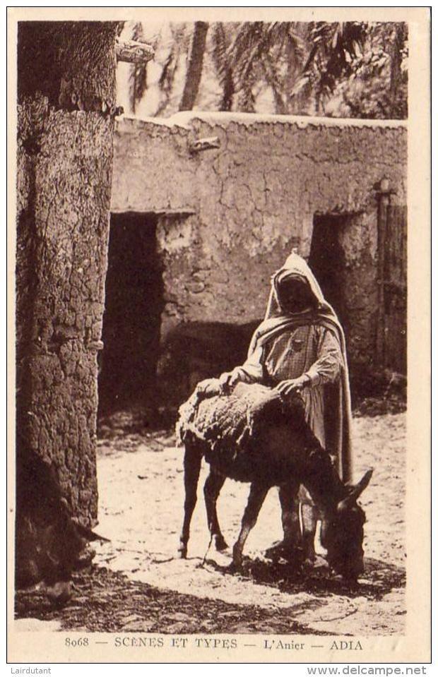 ALGERIE SCENES ET TYPES L'Anier ( Âne , Bourricot ) ..... ( Ref FA1656 ) - Algérie