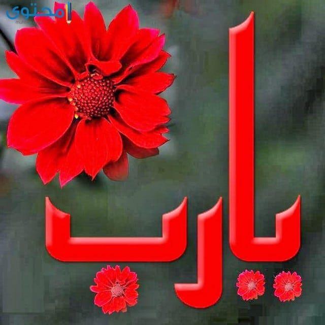 كلمة يارب مصورة Islamic Pictures Greetings Country Flags