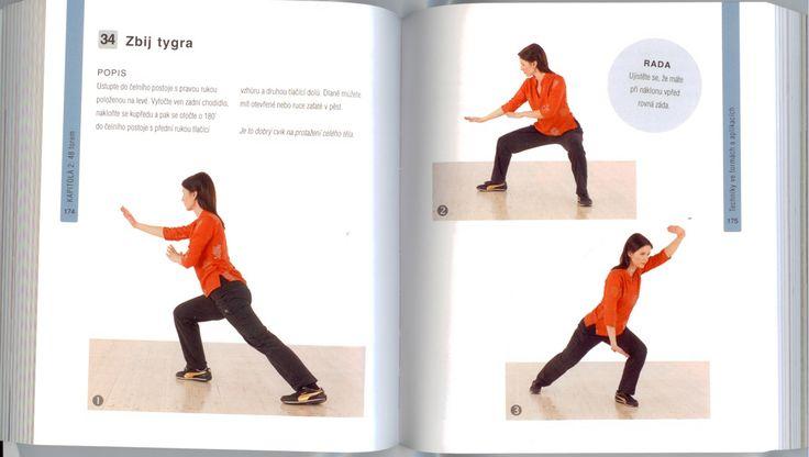 Ukázka z publikace TAI-ČI OD A DO Z