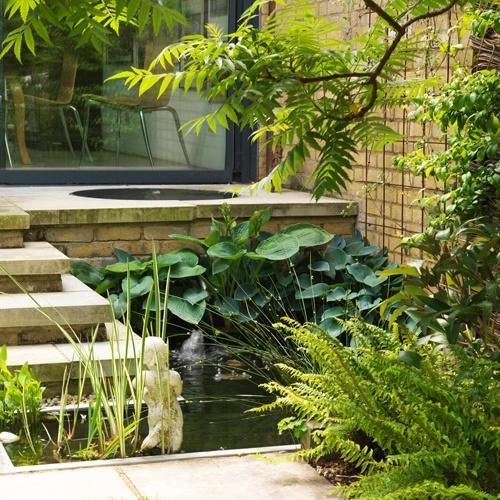 Pamela Johnson DesignTerraces Gardens, Design Ideas, Woodland Gardens, Design Portfolio, Johnson Design, Pamela Johnson, Landscapes Design, Gardens Design, Gardens Outdoor
