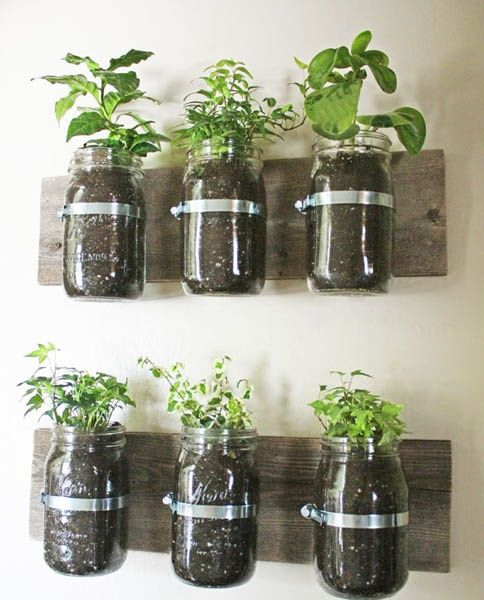Recycled Jar Herb Garden