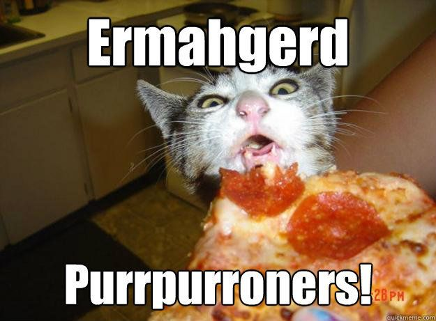The struggle between skinny jeans and pizza These Cat Memes Explain Your Existence