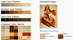 You can create a color palette for a room, based on an image.