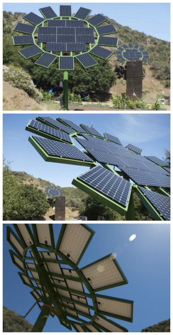 Solar Sun Flowers Project. #solar #aurinkopaneeli #aurinkoenergia for further info in Finland: www.cioy.fi