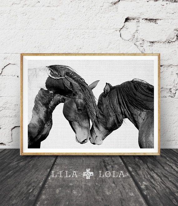 Horse Print Black and White Photography Horse Print by LILAxLOLA