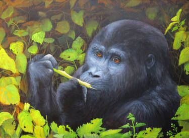 Gorilla in our midst - Acrylic on canvas. The gorilla is now an endangered species. It is hard to believe that anyone would want to kill these incredibly intelligent animals. I recently completed this painting which will be on exhibition at the Atwell Gallery Perth, Western Australia from the 5th -24th August as part of the Awards of Excellence annual exhibition.