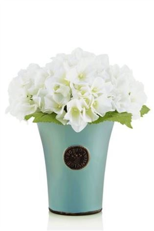 Buy Hydrangea In Teal Pot from the Next UK online shop