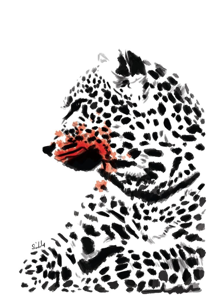 Digital sketch. #animal  #cartoon #sketch #art #wildlife #wild #cheetah #design #digitalsketch #drawing #ghepard #photoshop #feline #szekelydaniel #darko #alwayscreative87 #beltonaru #tryingtosurvive  http://szekelydaniel.blogspot.ro/ https://www.facebook.com/AlwaysCreative87/