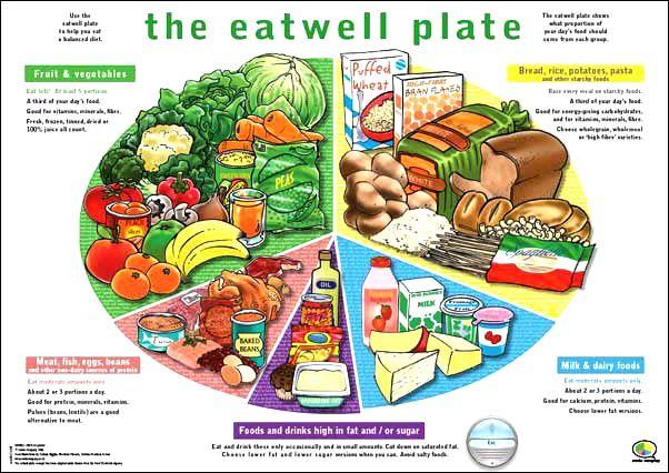 healthy-kids-lunch-plate-JUst.jpg (602×426)