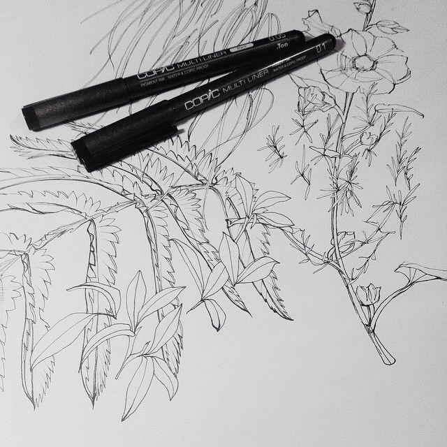 AUG | Line Work | development drawings by@shelley_steer