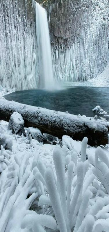 Crystal Palace - the amazing Abiqua Falls on ice, Oregon, USA | by Aaron Reed on 500px