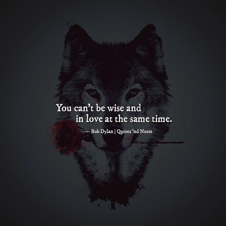 englisch wolf