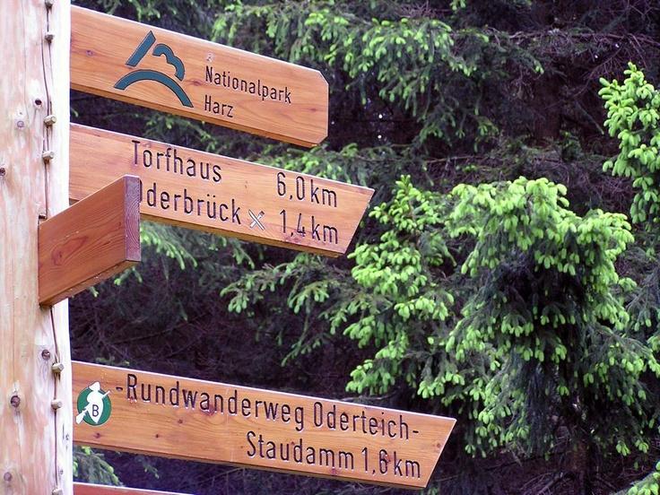 Nationalpark-Wegeschild   Quelle: Harzer Tourismusverband (c)