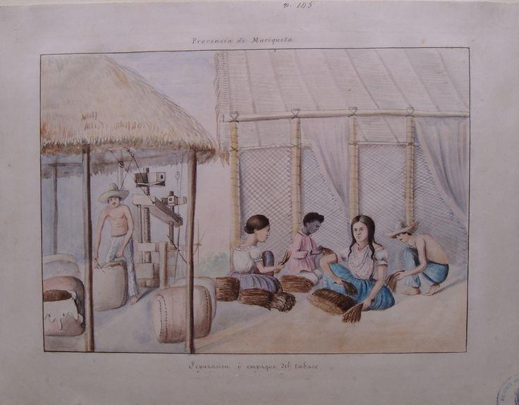 """""""Separación i empaque del tabaco. Provincia de Mariquita"""". Manuel María Paz, 1855. BNC, 5124."""