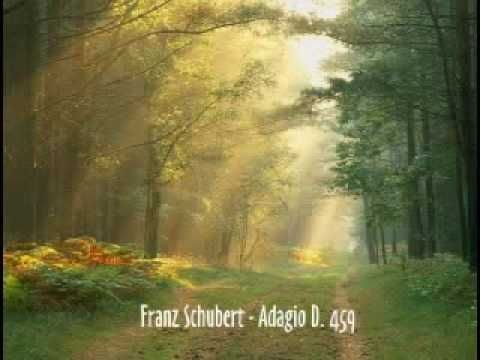 Franz Schubert - Adagio in E-Major D.459