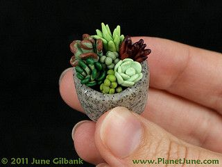 polymer clay succulent garden   Flickr - Photo Sharing!