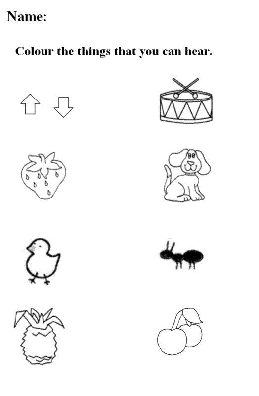 five senses worksheets for kindergarten | ... : Free ...