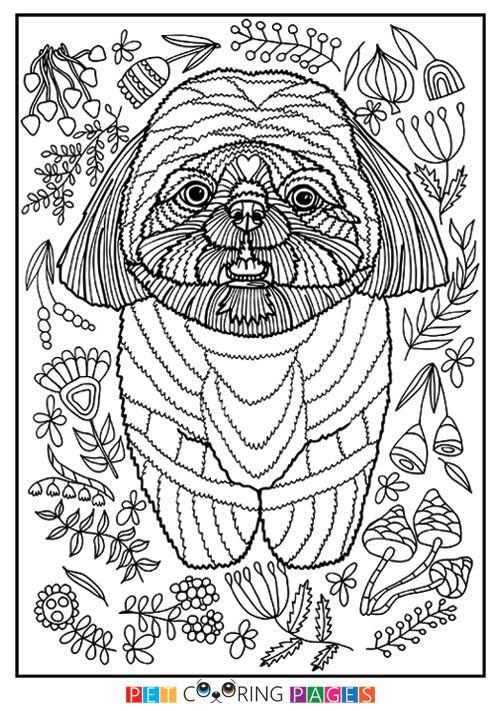 Free printable Shih Tzu coloring