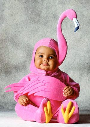 Best Store-Bought Halloween Costumes for Babies and Toddlers: Baby Flamingo (via Parents.com)