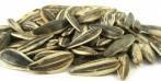 Semi di girasole: proprieta', benefici e dove trovarli