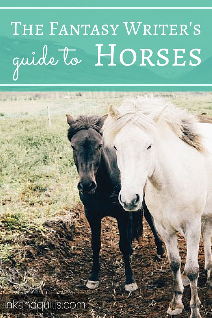 Does your #NaNoWriMo novel have a horse in it? Check out this fantastic guide to writing horses! #writingtip