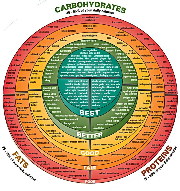 A graphic that describes the micronutrients (carbs, fats, protein) and places them in a hierarchy of best to poor.
