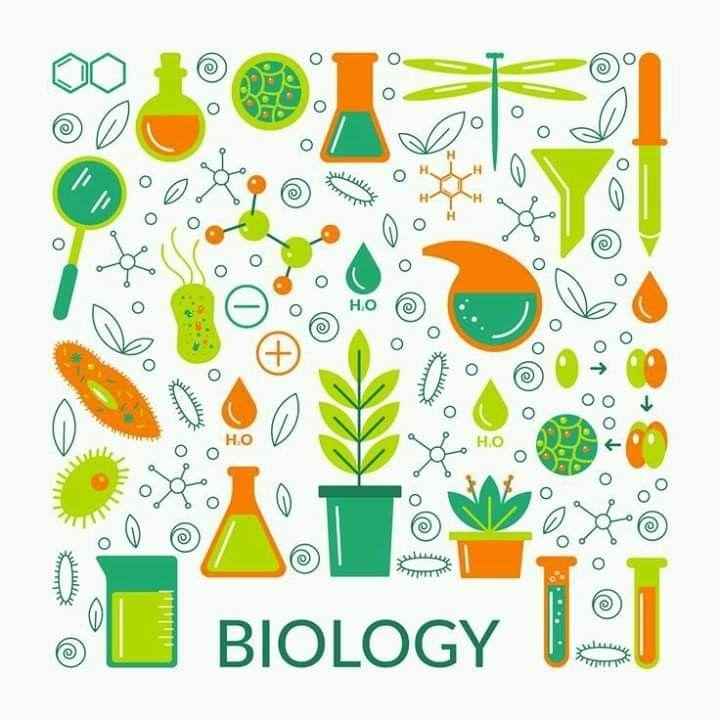 Pin De Areli Tlilayatzi En Biotecnologia Portadas De Biologia Caratula De Biologia Dia Mundial Del Medio Ambiente