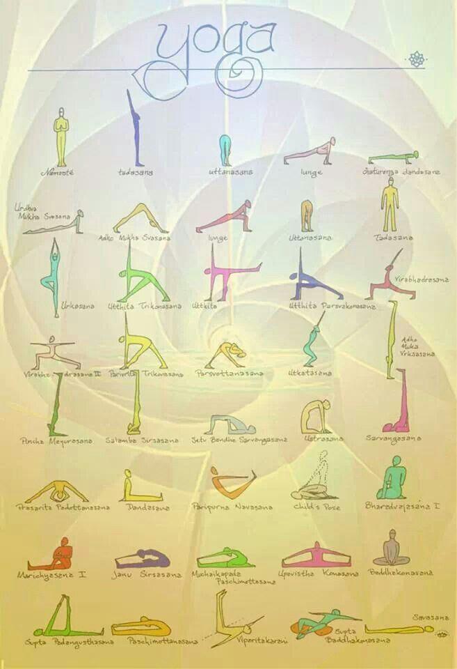 Yoga for beginner's