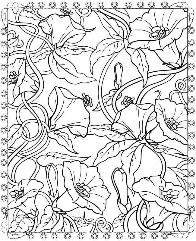 colouring in page sample from creative haven floral designs coloring book via