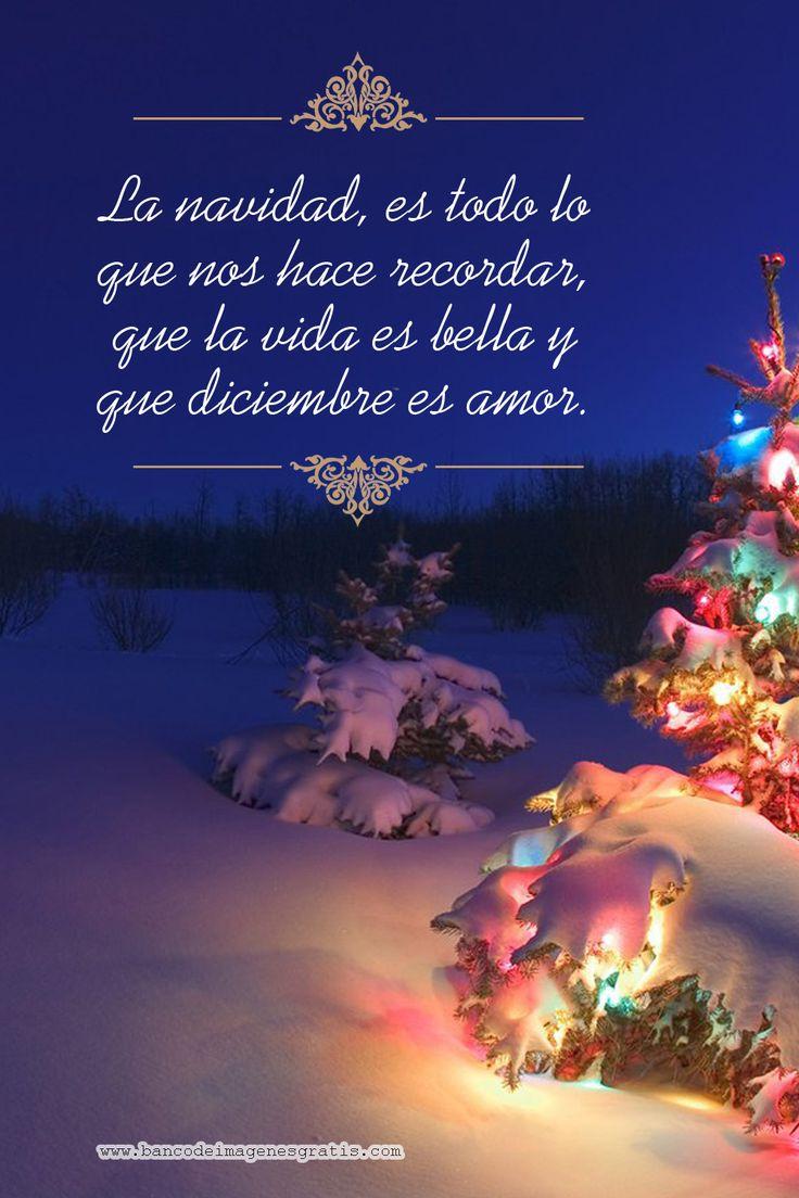 La Navidad, es todo lo que nos hace recordar, que la vida es bella y que diciembre es Amor