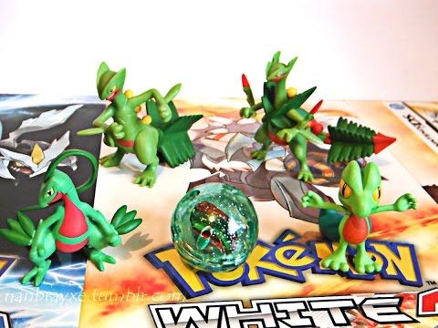 Review: Figuras Pokémon Tomy - Moncollé Mega Evolution Pack: Sceptile en Español - YouTube