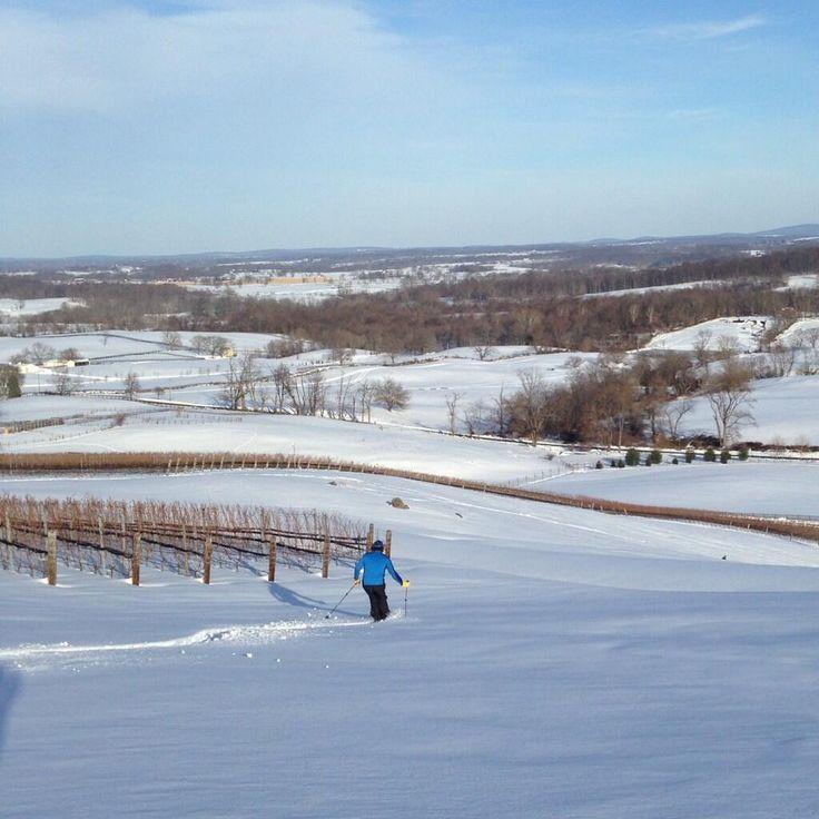 RDV Virginia Snow