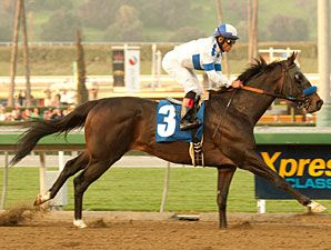 Twirling Candy(2007)Candy Ride- House Of Danzing By Chester House. 3x5 To Mr. Prospector, 4x5 To Northern Dancer. 11 Starts 7 Wins 1 Second 1 Third. $944,900. Won 2010 Malibu S(G1), Del Mar Derby(G2T), 2nd 2011 Pacific Classic(G1), Hollywood Gold Cup(G1). Sent To Stud In 2012 At Lane's End In Ky.
